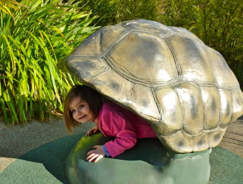 Crawling through turtle shells...